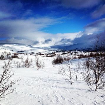 Norway X Country Ski